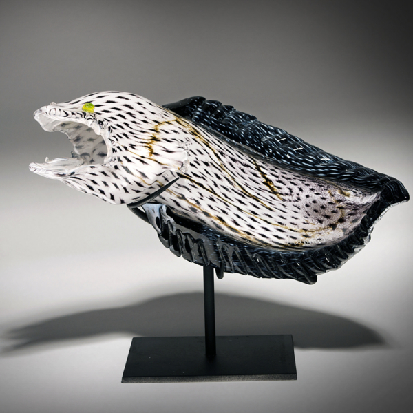 Snowflake Eel by Lee Harris Studios